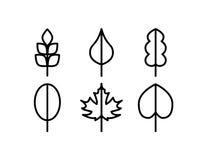 Thin line vector tree leaf icons. Set Stock Photos