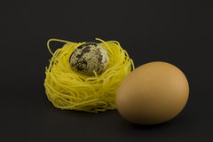 Thin pasta in a form of nest on a dark background. Stock Images