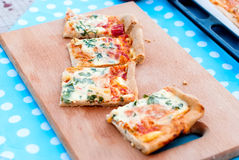 Thin pizza with tomato, grated cheese and herbs Royalty Free Stock Photo
