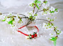 Thin red wreath with cherry blossom. Flower crown Stock Photos