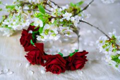 Thin red wreath with cherry blossom. Flower crown Royalty Free Stock Photography