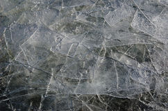 Thin shivers of broken ice Stock Image