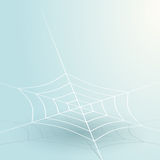 Thin spider web Royalty Free Stock Photo
