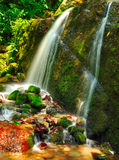 Thin stream of falling water Stock Images