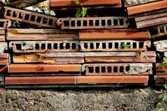 Thin used red hollow bricks stacked together on concrete foundation background texture. With green and dry crawler plant between on warm summer day stock image