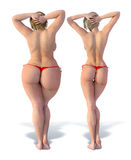 Thin versus Fat from Behind. Thin girl alongside fat girl from behind against a white background. Photorealistic 3D render Stock Images