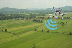 thingsindustrial农业和聪明的种田的概念,农夫保留的数据用途寄生虫互联网在通过使用t的领域 免版税库存照片