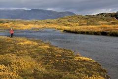 thingvellar的冰岛 库存图片