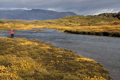 Thingvellar - IJsland Stock Afbeeldingen
