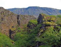 Thingvellir national park Iceland - north american - europe lithosferic rift. With green vegetation Royalty Free Stock Images