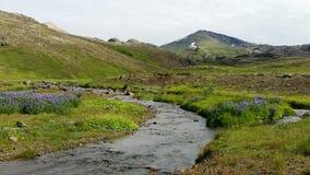 Thingvellir National Park Iceland Stock Image