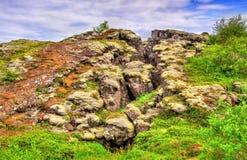 Thingvellir National Park, a UNESCO World Heritage Site - Iceland Royalty Free Stock Photo