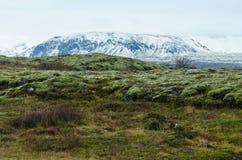 Thingvellir park narodowy fotografia royalty free