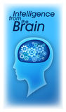 Think. Intelligence derived from the brain, the brain seems to be a sophisticated machine Royalty Free Illustration