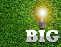 Think Big Concept. Light bulb on green grass background stock photos