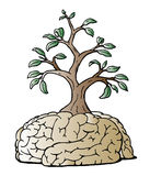 Think Green. Vector illustration of a tree growing out of a brain Stock Photo