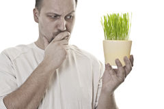 Think Green. Worried man holding green wheat  thinking about global warming Stock Images