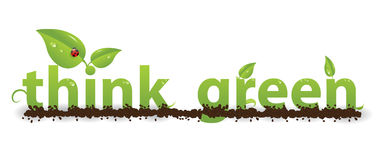 Think green. The words think green with leaves, dirt and dew implying conservation, environment and the nature Royalty Free Illustration