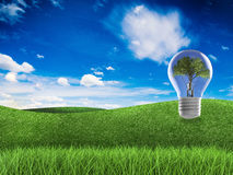 Think green concept. With light bulb in green field and blue sky background Royalty Free Stock Photos