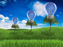 Think green concept. With light bulb in green field and blue sky background Royalty Free Stock Image