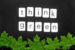 Think green concept with maple leave on black background top view. Think green concept with maple leave and copy on black background top view royalty free stock photos