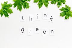 Think green concept with maple leave on white background top view. Eco friendly. Think green concept with maple leave and copy on white background top view royalty free stock images