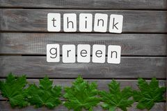 Think green concept with maple leave on wooden background top view. Think green concept with maple leave and copy on wooden background top view royalty free stock images