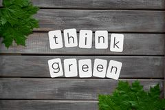 Think green concept with maple leave on wooden background top view. Think green concept with maple leave and copy on wooden background top view stock photo