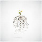 Think green concept. Tree of green idea shoot grow on human head Royalty Free Stock Image