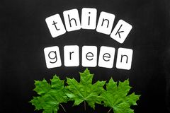 Think green copy with green maple leaves for ecology concept on black background top view.  royalty free stock images