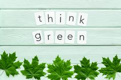 Think green copy with green maple leaves for ecology concept on mint green wooden background top view.  royalty free stock photo