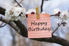 Happy birthday in memo. Think green in memo pined on tree with blooms Stock Photos