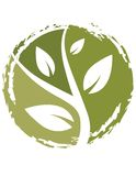 Think Green Plant Icon Royalty Free Stock Photos