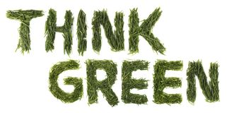 Think Green Words. Isolated think green grass on a white background Stock Photo
