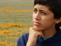Think Hard. Boy, thinking in poppy field stock image
