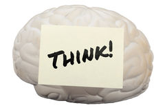 Think! with model brain to generate ideas Royalty Free Stock Photos