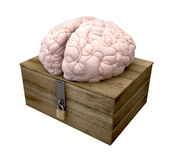 Think Outside The Box Brain. A rough wooden planked box with a lid on hinges locked by a brass padlock and a hasp with a regular brain perched on top on an Royalty Free Stock Photo