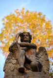 The thinker statue of an angel with a book in autumn Stock Images