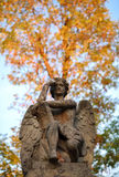 The thinker statue of an angel with a book in autumn Stock Photography