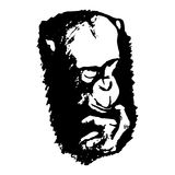 A thinking ape abstraction. Graphic image of a monkey's head on a white background. Abstract drawing - monkey thinks, vector illustration Royalty Free Stock Photography