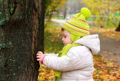 Thinking baby looking on big tree Royalty Free Stock Image