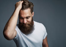 Thinking bearded man holding hair and laughing. Thinking young man with long beard and white shirt holding hair while facing downward over gray background with Stock Images
