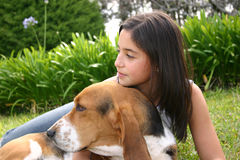 Thinking dog and teen. One teen woman is taking care of her dog Stock Photography