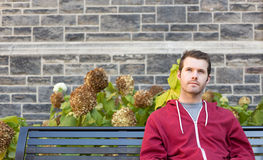 Thinking Man on a Bench Royalty Free Stock Images