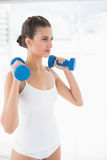 Thinking natural brown haired woman in white sportswear lifting dumbbells Royalty Free Stock Image