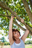 Thinking 50s woman under a tree for metaphor of peace Royalty Free Stock Image
