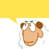 Thinking sheep Stock Photo