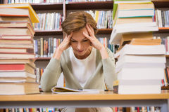 Thinking teacher sitting at library Royalty Free Stock Photography