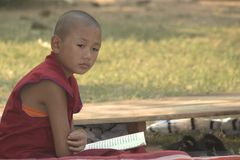 A thinking young monk Stock Images