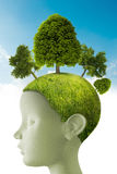 Thinks green. Tridimensional computer graphics face profile with meadow and trees on head Royalty Free Stock Photography